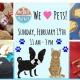 MiraBay Market + Puppy Meet & Greet