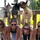Goat Yoga to Benefit the American Lung Association