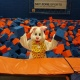 The Easter Bunny at Toddler Time!