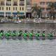 2017 Tampa Bay International Dragon Boat Races