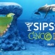 Sips Under the Sea: Cinco de Mayo