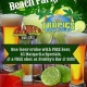 Cinco de Mayo Beach Party w/Crabby's Bar & Grill