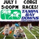 Corgi Races featuring the Tampa Bay Corgi Meetup Group