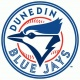 Celebrate Indepence Day with the Dunedin Blue Jays