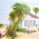Beautiful Brevard Exhibit at Studios of Cocoa Beach