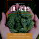 Christmas at Lil' Indies