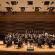 USF Wind Ensemble: Musical Curiosities