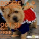 Doggy Costume Contest