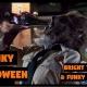 Funky Halloween with Highway Manor