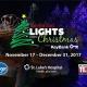 Lights Before Christmas Opening Night Tree Lighting