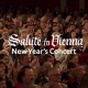 Salute to Vienna New Year's Concert in Coral Springs