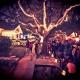 Lights on White Oak   Christian's Tailgate