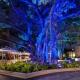 NYE Banyan Courtyard Celebration: Under the Sea