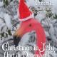 Secret Pants Presents: Christmas in July (But in December) at Johnny Brenda's