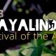 2018 Playalinda Festival of the Arts
