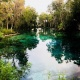 Last Open House at Three Sisters Springs