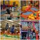 Homeschoolers Wednesday 1-3pm