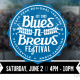 16th Annual Blues-N-Brews Festival