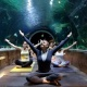 Yoga with the Sharks! at The Living Planet Aquarium