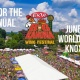 6th Annual Big Kahuna Wing Festival