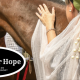 Racing for Hope: A Festive Derby Gala Benefiting Homeless Youth Connection