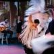 Friday Flamenco