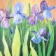 Wine & Canvas Painting Class: Blue Iris