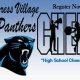 P.V. Panthers Cheer