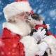 Santa Paws Pet Photos with Santa at The Galleria at Fort Lauderdale