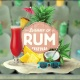 2018 Summer of Rum Festival Ft. Sugar Ray