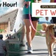 SPCA Tampa Bay Pet Walk Yappy Hour