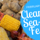 Clearwater Sea-Blues Festival 2019