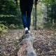 The Tess Trail Run
