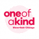 The 18th Annual One of a Kind Holiday Show