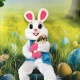 Pet Easter Egg Hunt and Easter Bunny Photo-op