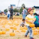 Harbor Harvest Fall Children's Festival