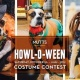 Howl-O-Ween Costume Contest (Dallas)