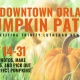 Downtown Orlando Pumpkin Patch