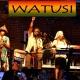 Sunday FUNday with Watusi
