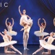 Sarasota Ballet Iconographic Season Opening