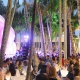MISO feat. Bernadette Peters LIVE in the Design District!
