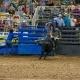 Boots, Bulls, and Barrels