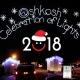 Oshksoh Celebration of Lights