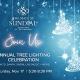 Holiday Tree Lighting Ceremoony