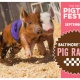 18th Annual Pigtown Festival