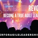 Becoming A True Agile Leader(TM) - Gaining Momentum
