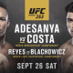 UFC 253 Viewing Party at Mac's Wood Grilled
