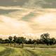 Upper Tampa Bay Golf Tournament