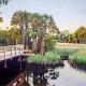 Ladale Lloyd: Florida Unspoiled
