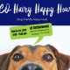 BCO Hairy Happy Hour (dog-friendly happy hour)